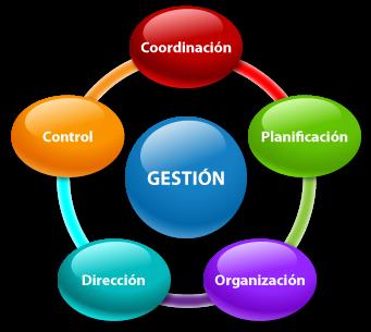 ciclo de gestion dentro de una empresa, software personalizable a su empresa